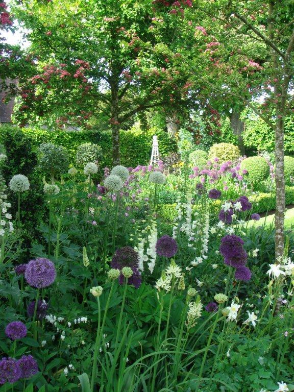 Country Garden Look Collection