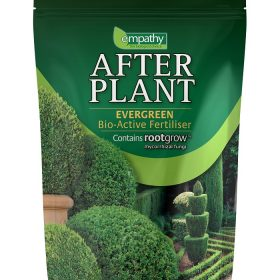 After Plant Evergreen with rootgrow